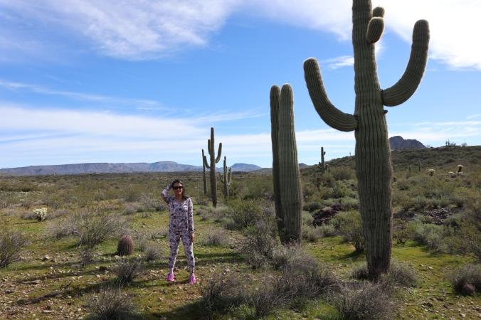 Isabel Valoria Rao Cactus